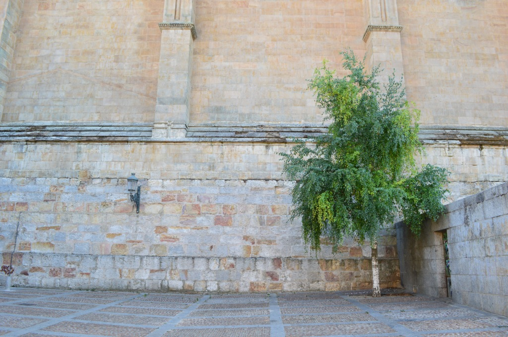 Rincón junto a la catedral.