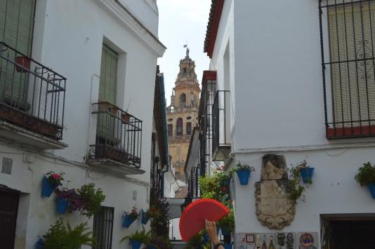 Torre de la catedra, antes torres alminar.